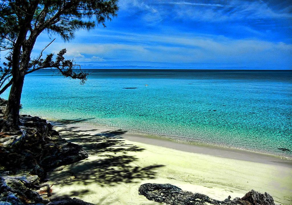isola eleuthera bahamas